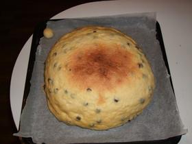メガ チョコチップメロンパン