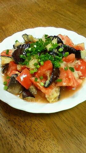 茄子とトマトと大根おろしのサラダ