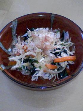 鶏胸肉と野菜のナムル