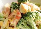 ブロッコリー、海老、卵のデリ