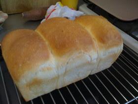 ちょめゴネ食パン