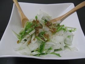 新玉ねぎと水菜のちりめん山椒サラダ