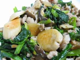 エリンギと青菜の豆板醤炒め