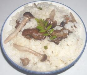 牡蠣の燻製の缶詰で簡単牡蠣ご飯