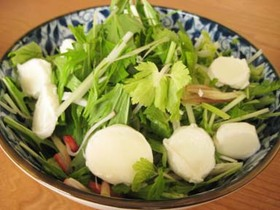 クセあり!水菜セロリみょうがサラダ