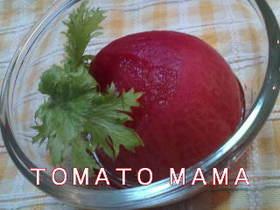 お酢でさっぱり☆トマトのコンポート