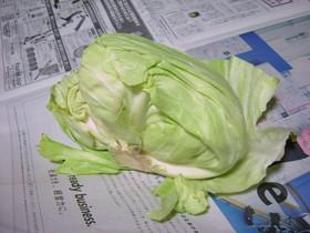 こんなものですが^^野菜の保存法