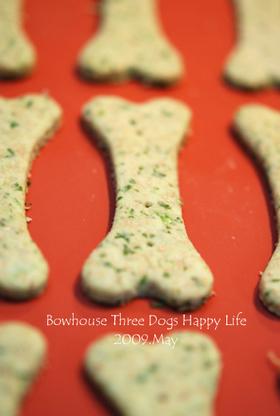 犬用★豆乳パセリクッキー