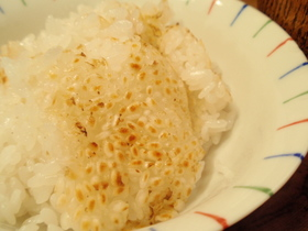 圧力鍋で炊くおこげ付(たぶん)白米