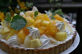 春のフルーツチーズケーキ