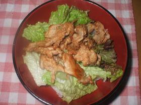 豚肉のテリヤキ丼