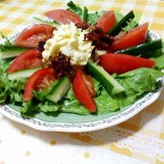 即席!簡単!三色の彩り鮮やかサラダ