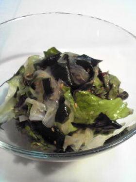 サニーレタスとわかめの白ゴマ風味サラダ