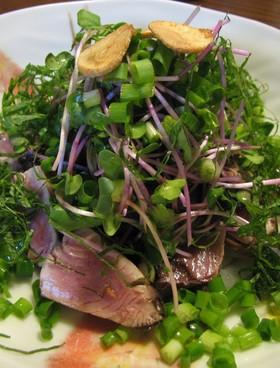 カツオのニンニクたたき香味野菜サラダ