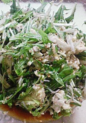 シャキトロ!水菜と豆腐の簡単サラダ