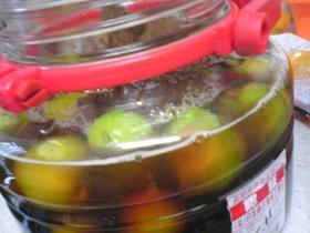 梅黒酢黒砂糖シロップ