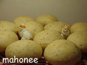 HBでღカマンベールチーズパンღ