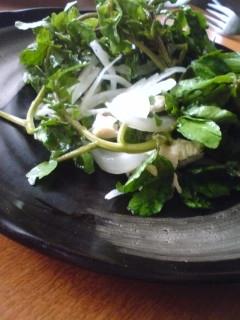 新玉葱とクレソンのサラダ