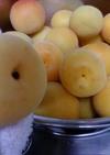 絶品ほんのりモモの香り完熟梅ジュース