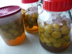 冷凍して作る梅シロップ