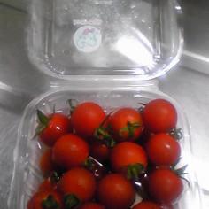 【簡単】ミニトマトの保存方法