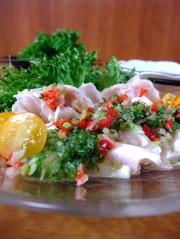 【和風】鶏胸肉のカルパッチョ・胡瓜ソースの写真