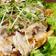 豚とキムチのポン酢サラダ