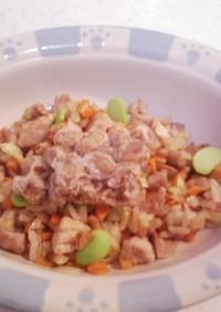 犬ご飯(納豆チャーハン)