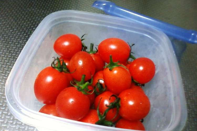保存 プチトマト ミニトマトは冷蔵・冷凍どちらも保存可能!やり方やおすすめの食べ方を紹介