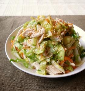 キャベツと鶏胸肉のモリモリおかずサラダ