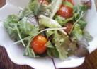 ベビーリーフとプチトマトの2分サラダ
