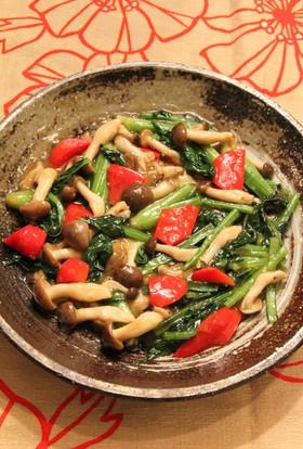 小松菜が1束食べられる~小松菜のうま炒め