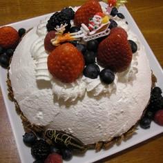 ヘルシードームケーキ☆