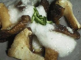 椎茸でオツな肴♪