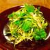 ささみとザーサイと三つ葉のグリーンサラダ