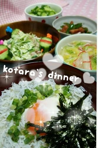 しらす丼と野菜♪ こたら家の夕飯−102