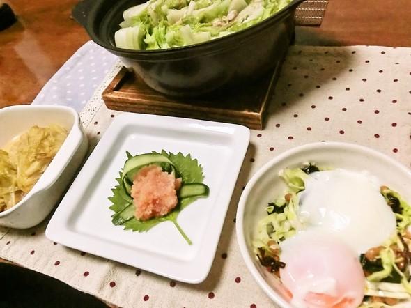 豚バラ白菜ミルヒィーユ鍋で夕食11/11
