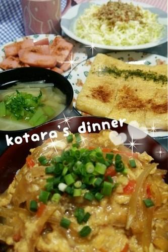 玉葱と卵の甘辛煮丼♬こたら家の夕飯118
