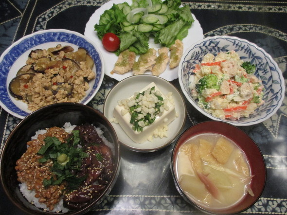 2017/4/17山葵ささみとホタルイカ