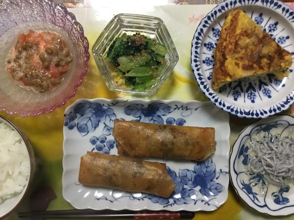 ☆春巻きで晩ご飯☆
