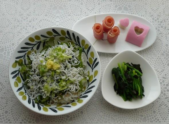 混ぜ混ぜシラス丼の朝食^^