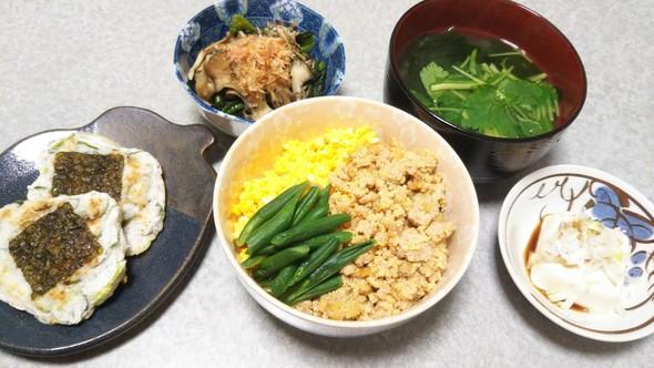 鳥ひき肉丼の晩ご飯