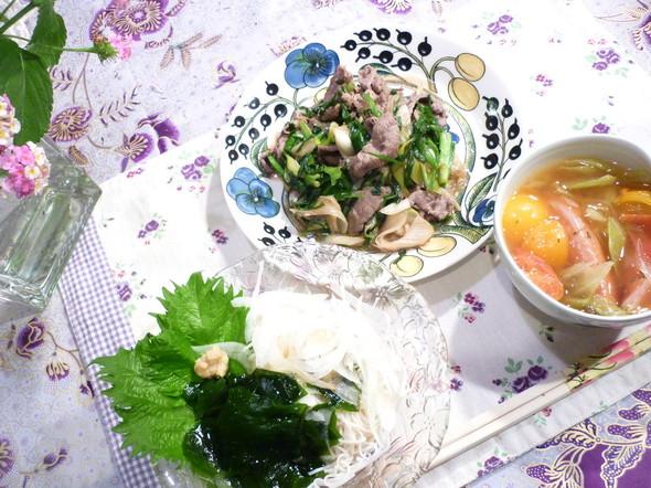 牛肉ニラネギ炒めにそうめん♫