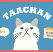TAACHAN☆