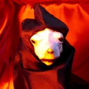 地獄の番犬ケルベ様