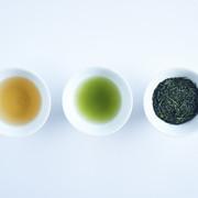 日本茶宮崎新緑園