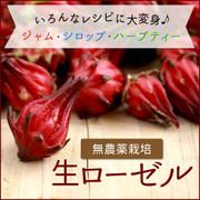 宮古島ぱりぱり市場