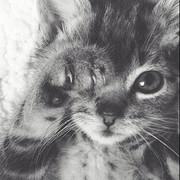 らむ♡黒猫系♡