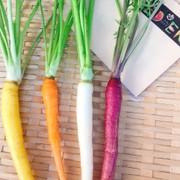 野菜ソムリエask