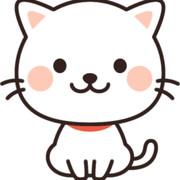 クックW0P4R5☆